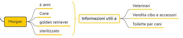 Analisi Anagrafica di un CRM informazioni di contatto personali 6