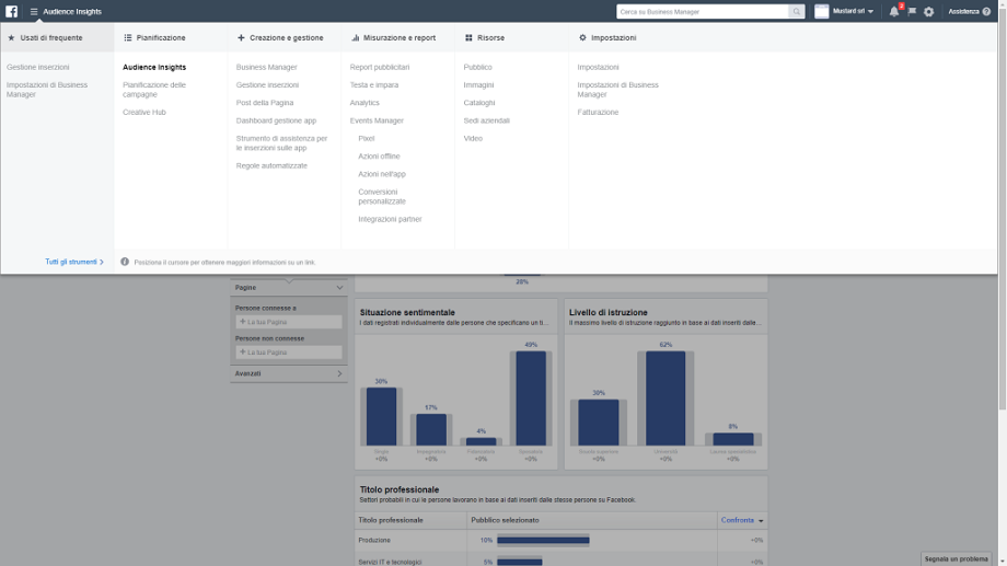 Business Manager Facebook Audience Insights